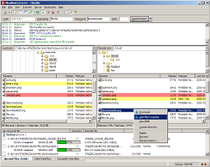 FileZilla main screenshot